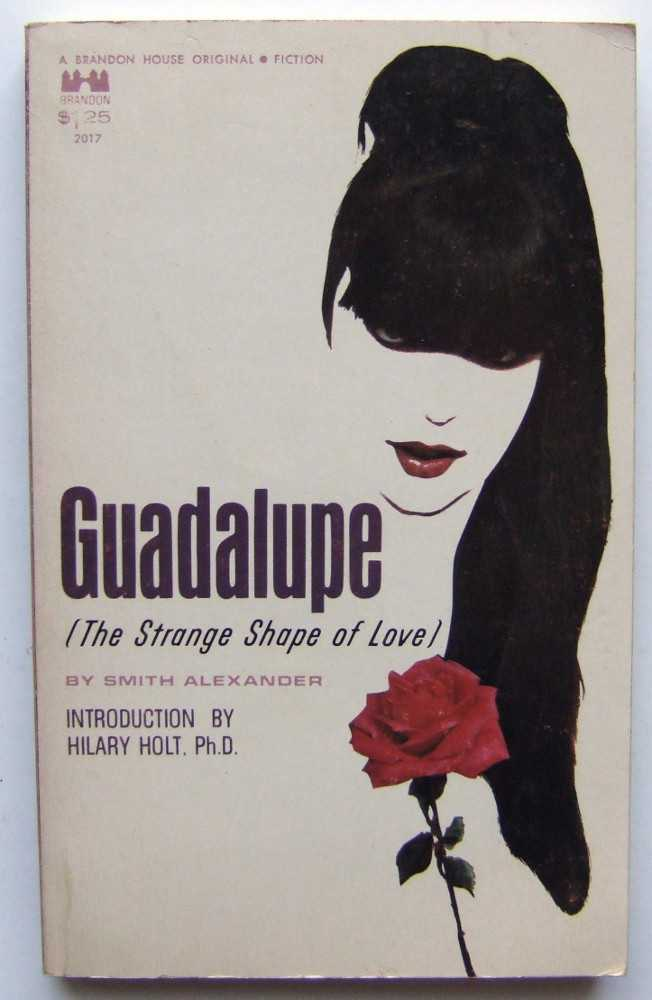 Image for Guadalupe: The Strange Shape of Love