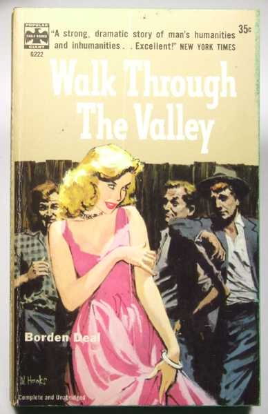 Image for Walk Through the Valley