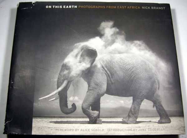 Image for On This Earth: Photographs from East Africa