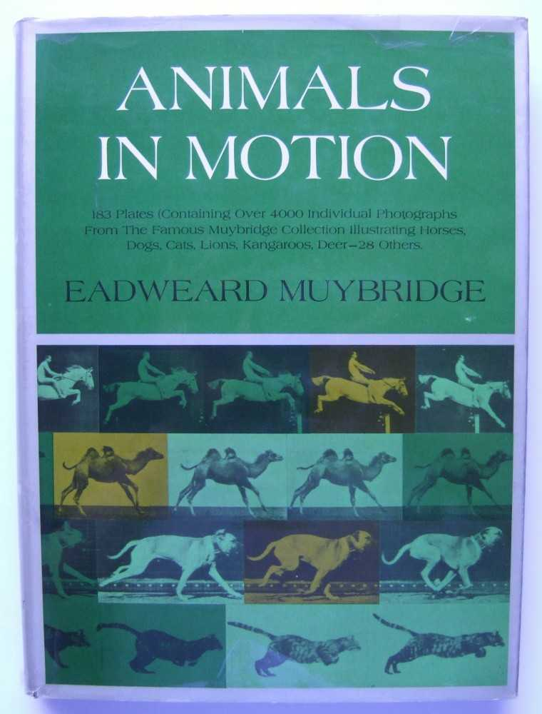 Image for Animals In Motion