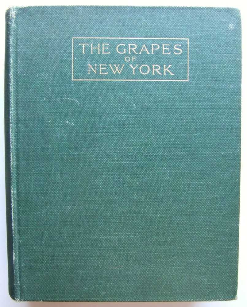 Image for The Grapes of New York (State of New York - Department of Agriculture - Fifteenth Annual Report - Volume 3, Part II)