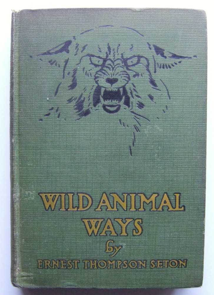 Image for Wild Animal Days